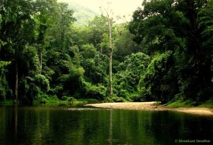 Shreekant Deodhar. 2009. Kerala.