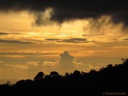 Shreekant Deodhar. Silhouette. 2011. KMTR.