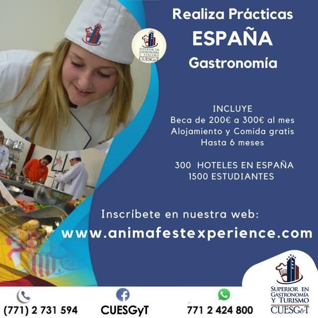 Licenciatura en Gastronomia en Pachuca