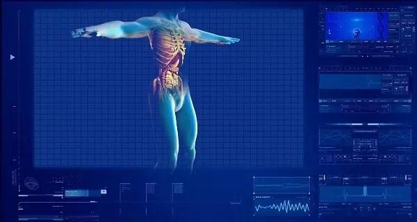 human-digestive-system-163714-128011