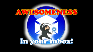 ROI Ninjas Weekly Kicks by C. E. Snyder Marketing LLC - Awesomeness in your inbox!