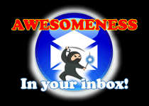 Marketing Ninja Weekly Kicks by C. E. Snyder Marketing LLC - Awesomeness in your inbox!