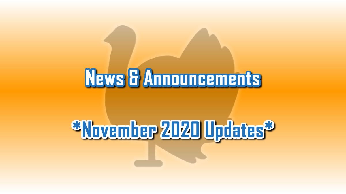 November 2020 Updates