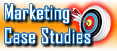 Strategic Consulting Partners: Digital Marketing Case Studies by C. E. Snyder Marketing LLC