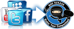 ROI Ninjas fully integrates with Facebook and Google