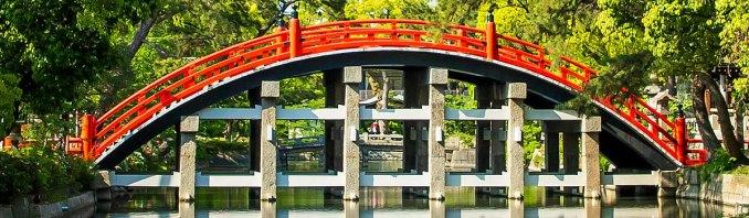 ROI Ninjas Weekly Kicks: bridging the gap between companies and their customers
