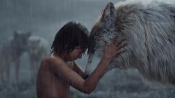 le_livre_de_la_jungle_mowgli