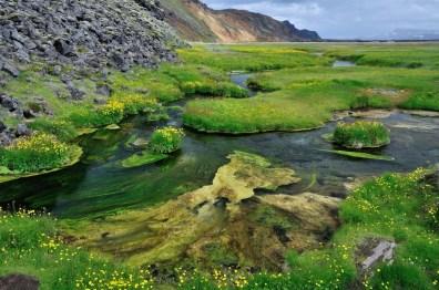 Landmannalaugar | Začátek treku k Brennisteinsaldě