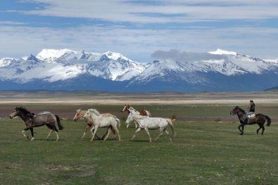 Ranč cestou k Perito Moreno