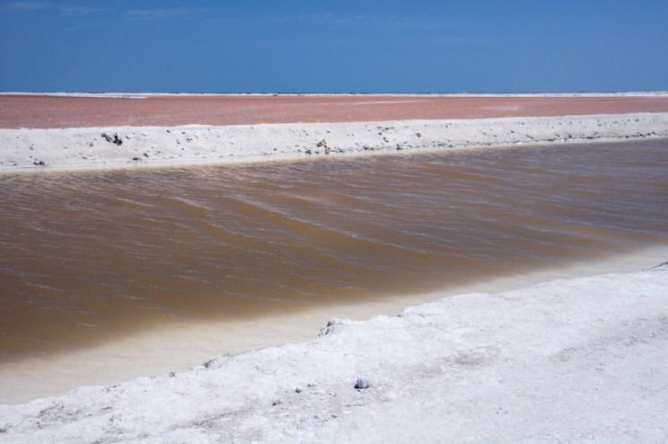 Ría Lagartos