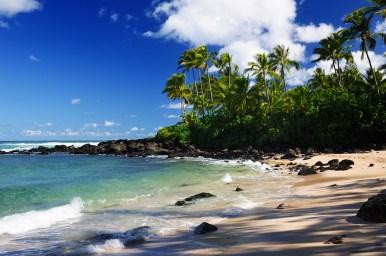 Laniakea Beach (Turtle Beach)
