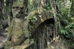 Mandala Wisata Wanara Wana (Opičí prales)