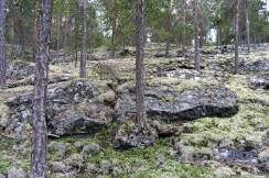 Nordberg u Lomu
