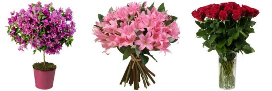 fleurs-aquarelle-2
