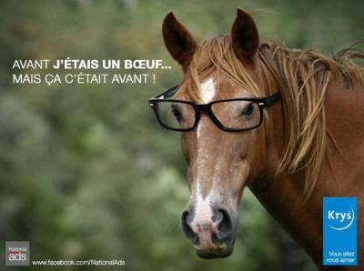 findus-cheval-humour-boeuf
