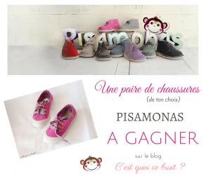 concours-pisamonas