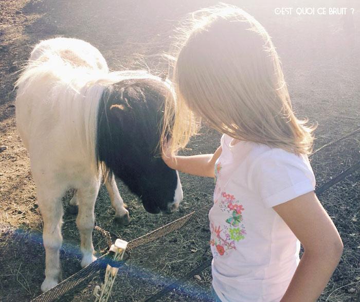 Centre équestre et poney des Terres de Saint-Hilaire