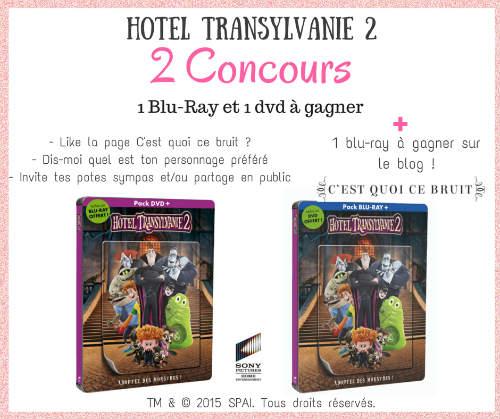 Concours hotel transylvanie 2