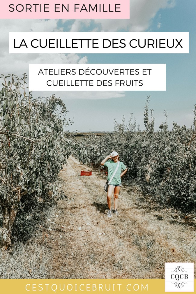 Sortie en famille : la cueillette des curieux avec des ateliers découverte et la cueillette des fruits #cueillette #nature #famille #sortie #food
