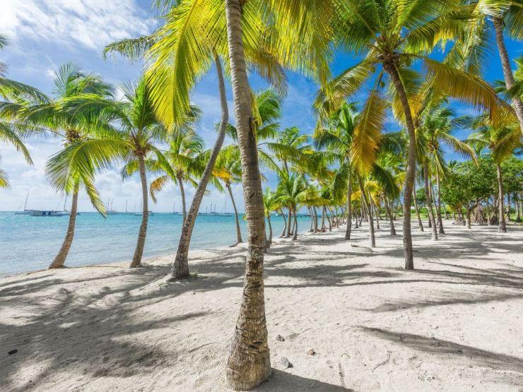 Voyage en Guadeloupe, 15 choses à faire et à voir pour des vacances réussies