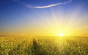 sunshine wallpaper x