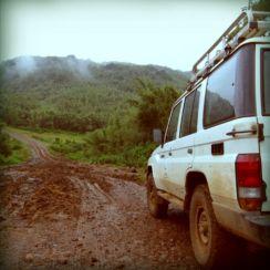 Unterwegs in den Bambuswald: In der Regenzeit ist die Strasse teilweise abenteuerlich