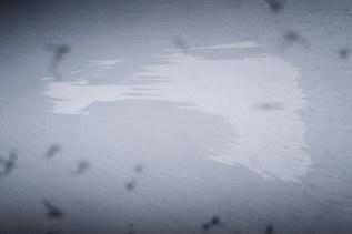 Fliegt man über Grönland, kann man im schier unendlichen weißen Eis, wenn man genau hinschaut, bizarre, sehr große Formen erkennen. Hier habe ich den Kontrast verstärkt, damit es deutlicher wird.