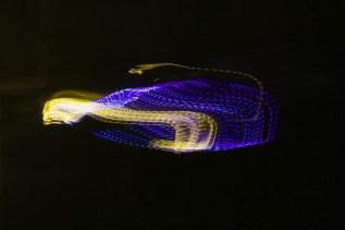 Lichter spiegeln sich abends im Kanal