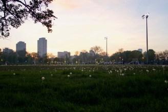 Fußball beim Lincoln Park