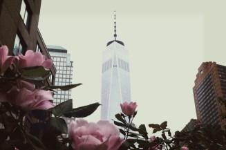 Die rosa Blumen rahmen den Freedom Tower ein. Dazu noch eine zarte Vignette...