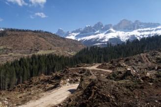 Verheerende Sturmschäden am Karerpass in den Dolomiten