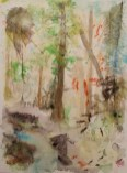 Der Wald als Ökosystem. Mit Hirsch an der Quelle - Aquarell