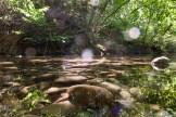 Klares Bächlein im Wald in der Toskana