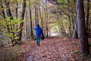 Herbstspaziergang in der Eifel