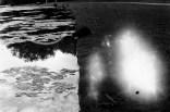 Enten in den Rheinauen mit großem Lichtleck