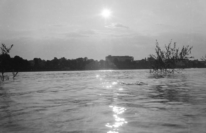 Funkelnde Sonne über dem Rhein
