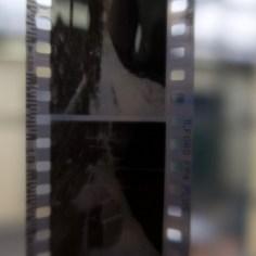 Nach zwei Tagen im Salzbad. Der fixierte Film sieht klar aus und lässt sich gut scannen und printen.