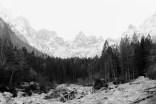 Winterberge mit Wald