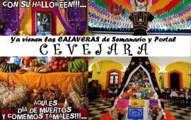 Ya vienen las CALAVERAS del Semanario y Portal www.cevejara.com