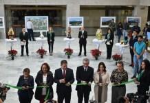 """Inaugura diputado Pozos Castro la exposición """"expresa nuestros valores"""""""