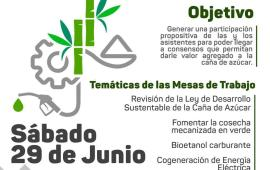Veracruz se afianza como primer productor nacional de caña y de azúcar