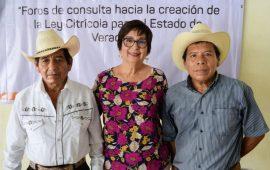 Ley Citrícola de Veracruz, dará certeza jurídica a productores : Mago Corro