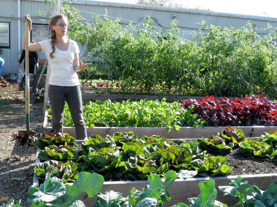 Mara Gittleman, KCC Urban Farm Education Manager, Researches ...