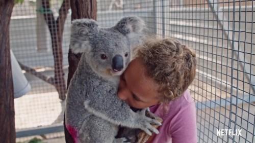 Trailer: Izzy's Koala World
