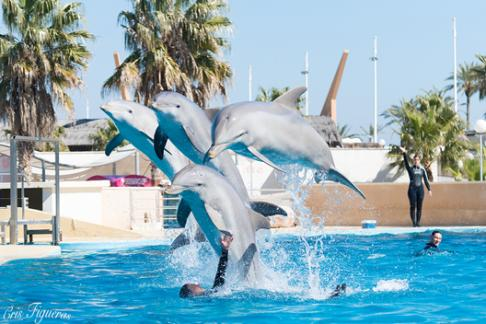 Aquopolis Costa Dorada - 2 Days for Price of 1