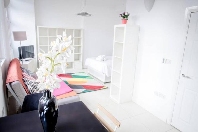 Large Studio Apartment Close To