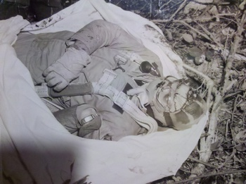 Warning Graphic Wwii Dead Us Navy Pilots Us Navy