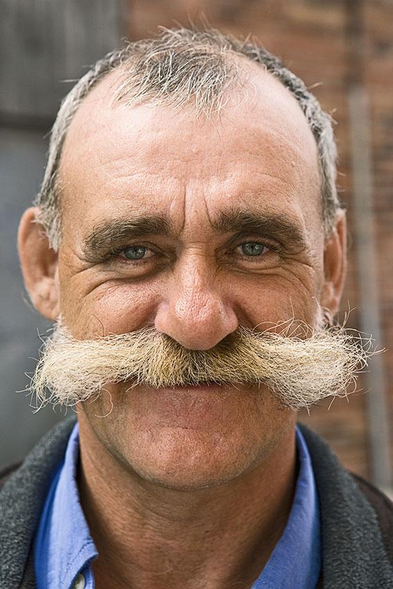 Gallery Of Mustache Styles