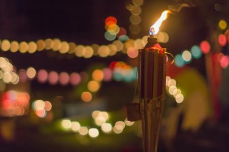 Image result for torches outdoor party
