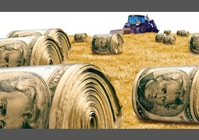Image result for image of farm subsidies